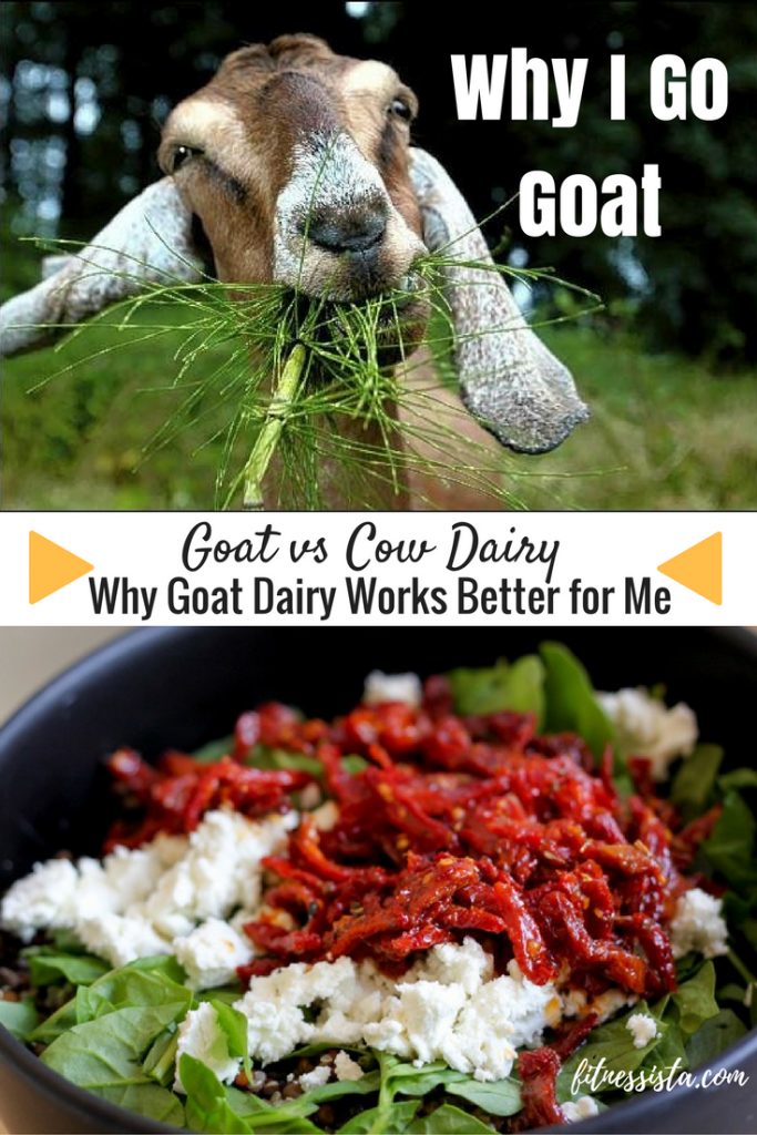 Goat Dairy vs Cow Dairy