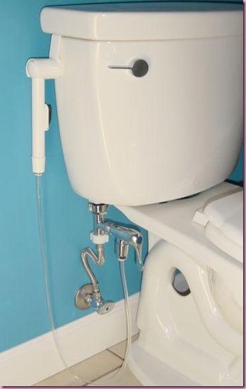 mini-shower-toilet