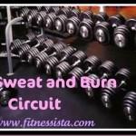 Sweat and Burn Circuit