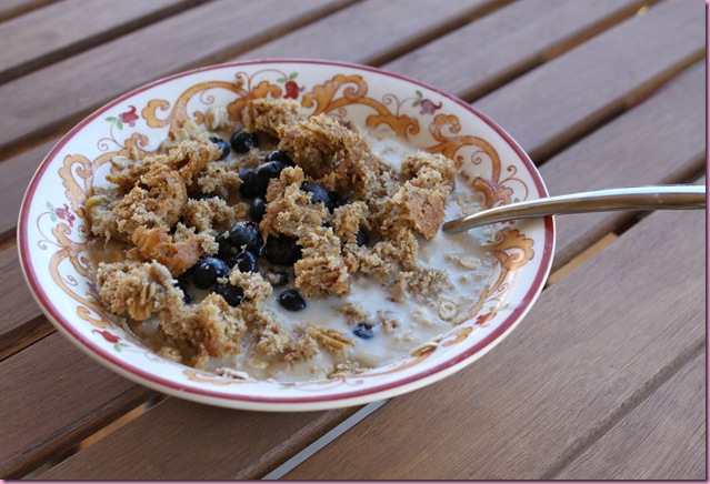 oats with muffin