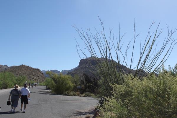 Sabino canyon2