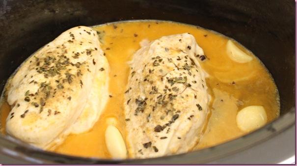 taco chicken3