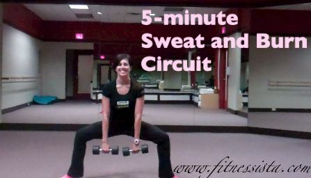 Sweat and burn circuit1