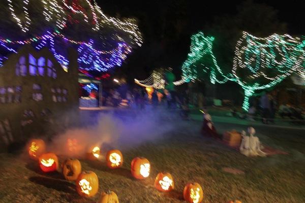 Zoo halloween 4