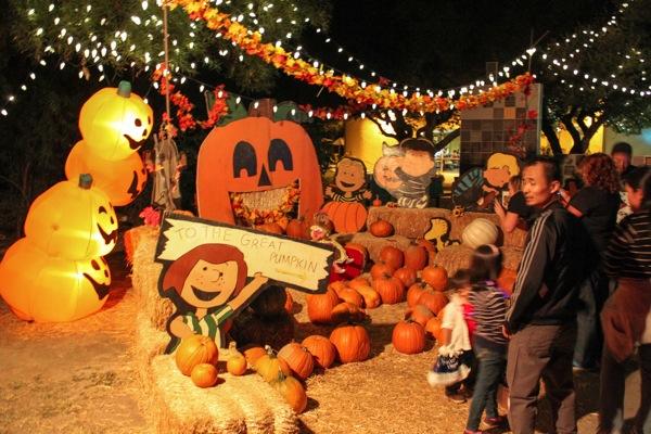Zoo halloween 9