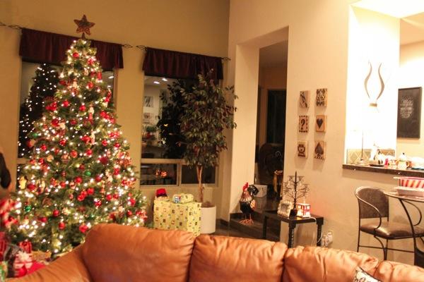 Tree  1 of 1 2