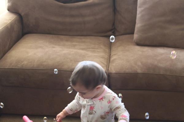 Bubbles  1 of 1