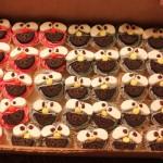 cupcakes (1 of 1)-3.jpg