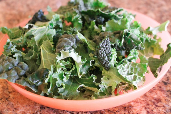 Kale salad  1 of 1