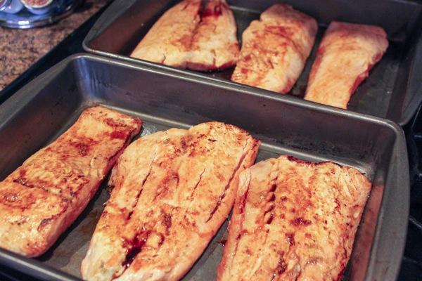 Salmon  1 of 1