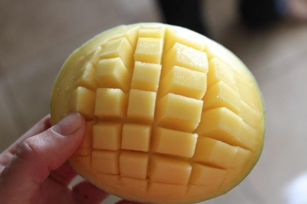 Mango  1 of 1