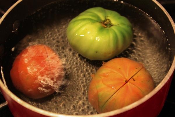 Tomatos  1 of 1