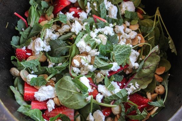Salad  1 of 1