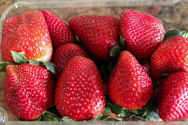 Berries  1 of 1