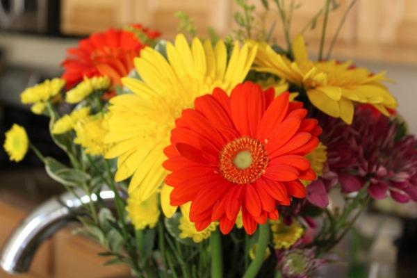 Flower  1 of 1