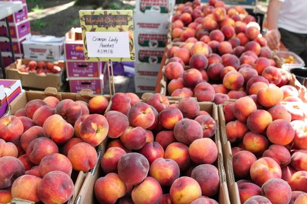 Peaches  1 of 1