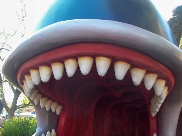 Whale teeth  1 of 1