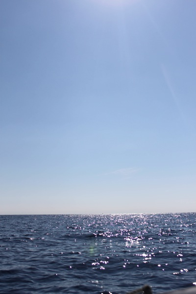 Boat  1 of 1 19