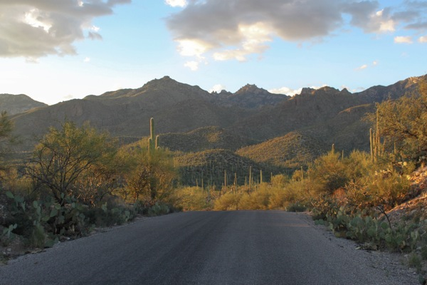 Sabino scenery  1 of 1