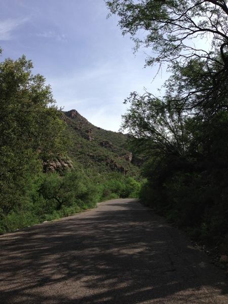 Canyon run