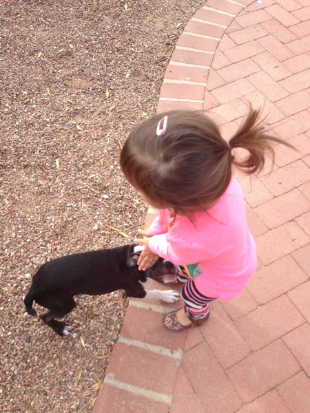 Playing with luna