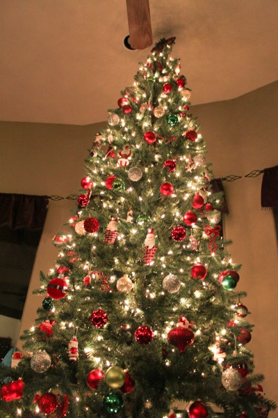 Dads tree  1 of 1