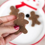 gingerbread-amazeballs-1-of-1-3.jpg