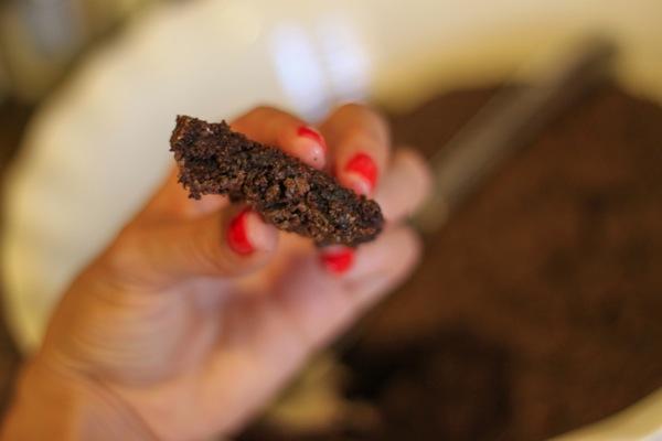 Brownie  1 of 1