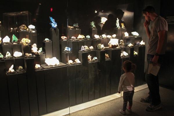 Desert museum  1 of 1 7