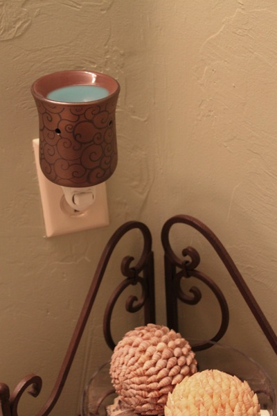 Scentsy  1 of 1