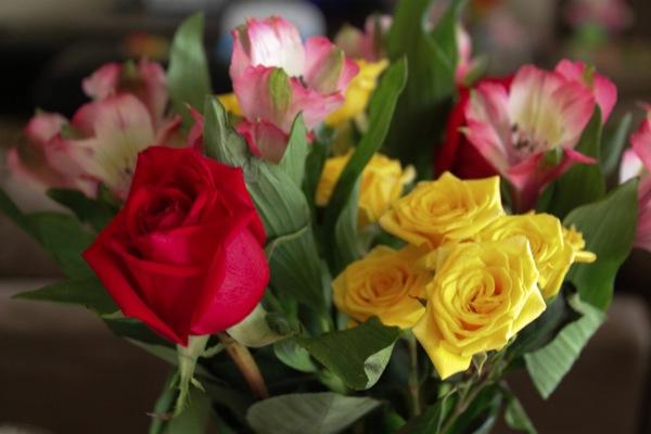 Flowers  1 of 1 2