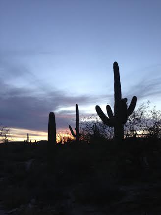 Sabino sunset