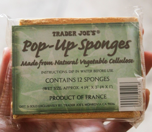 Sponges  1 of 1