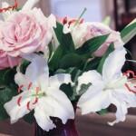 lilies (1 of 1)-3.jpg