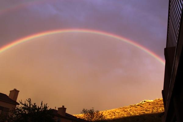 Rainbow  1 of 1
