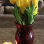 tulips (1 of 1)-2.jpg