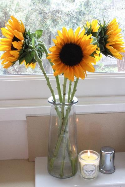 Sunflowers  1 of 1