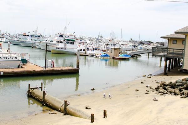 Pier  1 of 1