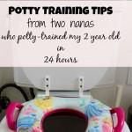 potty training tips.jpg