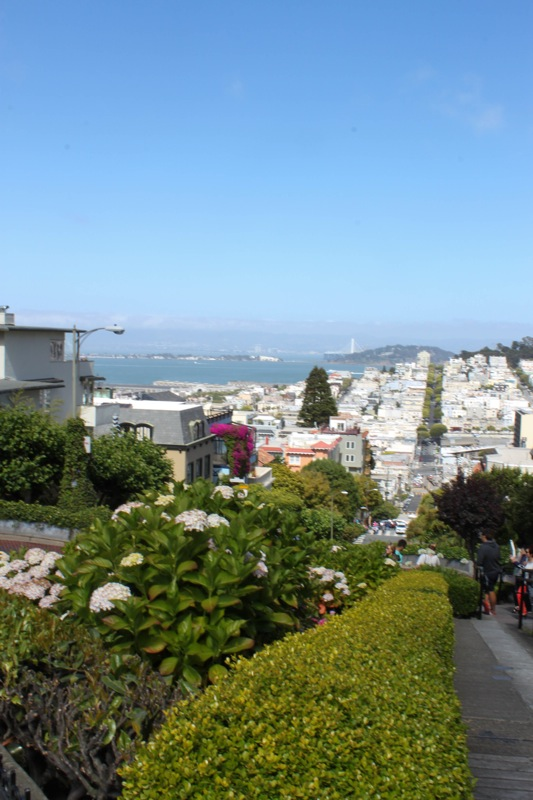 Lombard  1 of 1