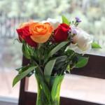 roses (1 of 1)-3.jpg