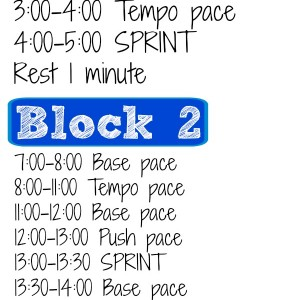 A high intensity treadmill workout incorporating sprint and tempo drills. Awesome way to improve speed and power! Segmented into training blocks to make the time fly by. www.fitnessista.com