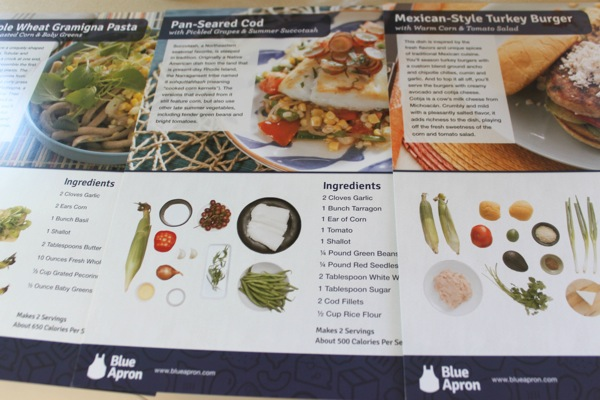 Blue apron 1 of 1 8