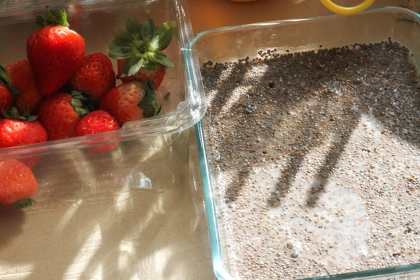 Chia pudding  1 of 1 3