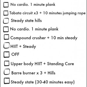 give planks workout plan! an effective and balanced fitness plan leading up to thanksgiving!