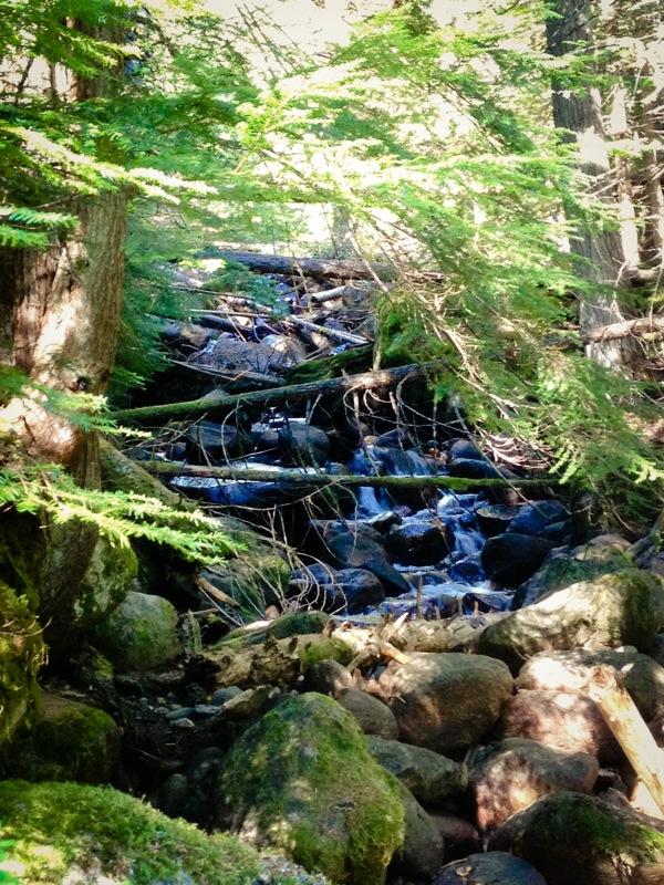 Creek  1 of 1