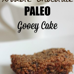 double-chocolate-paleo-gooey-cake.jpg
