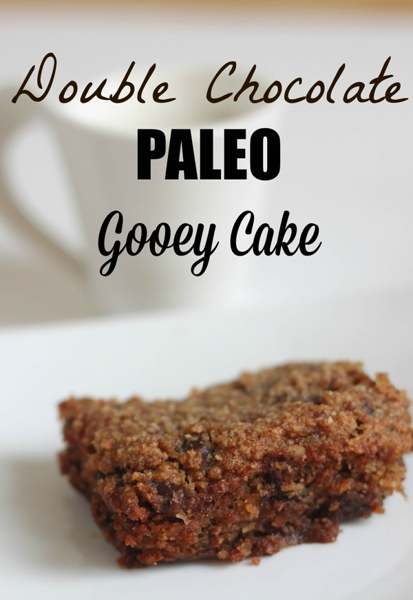 Double chocolate paleo gooey cake