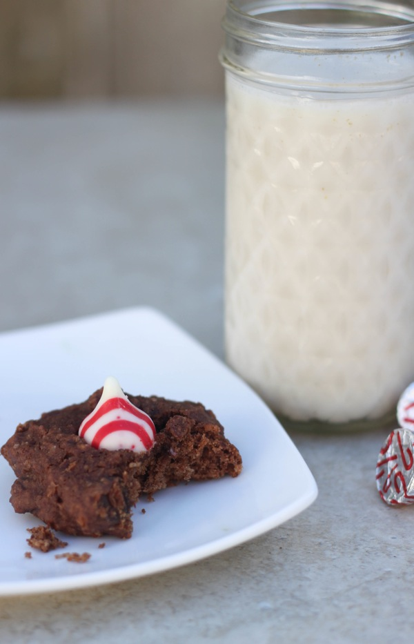 holiday cookie and milk
