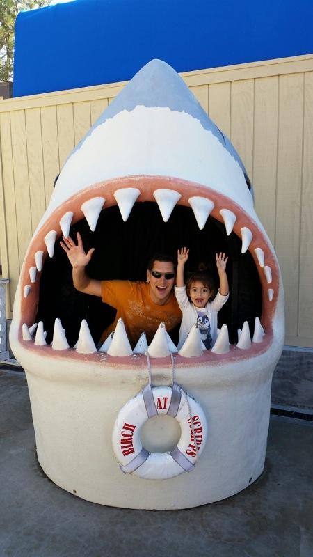 Tom and liv and shark
